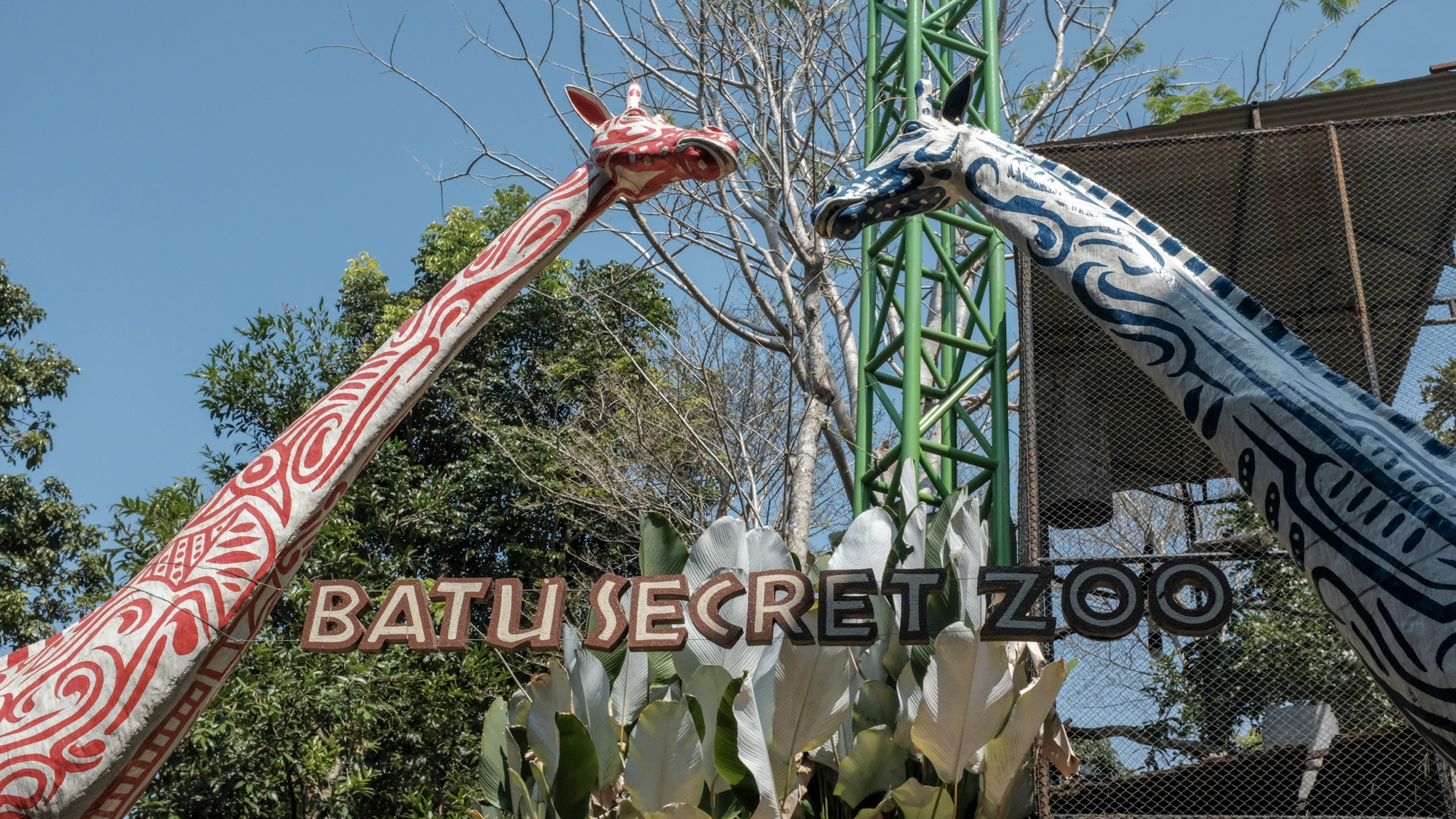 Batu 2018 Day 2 Batu Secret Zoo Avocadolite Blog